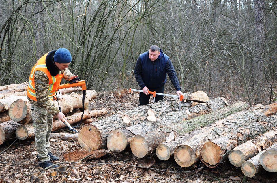 Изменения в Украине учета древесины и введение электронного отслеживания лесоматериалов