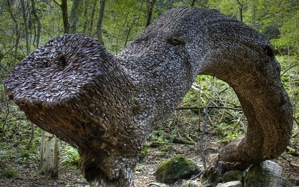 Денежное дерево – мечта Буратино