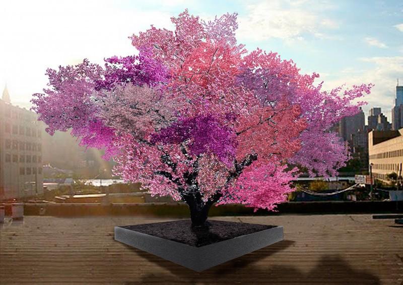 Фруктовое чудо – дерево 40 плодов