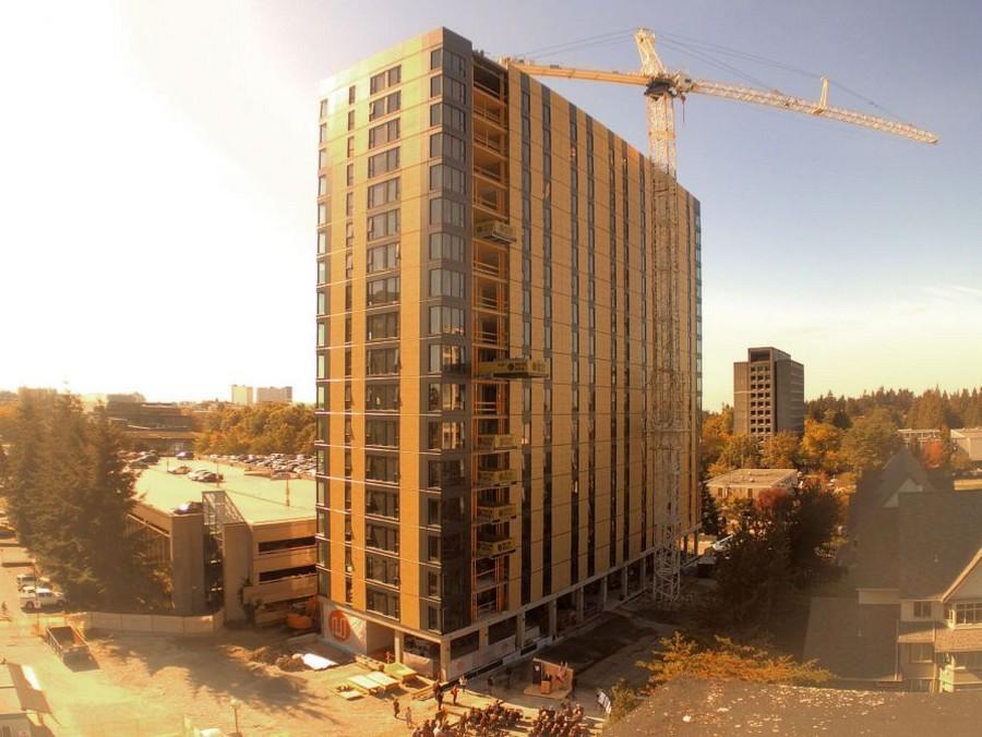 Деревянные небоскребы лучше бетонных