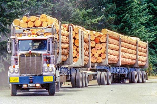 В Канаде проводится тестирование беспилотных лесовозов