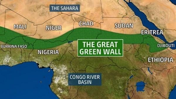 В Африке 21 государство строит Великую зеленую стену