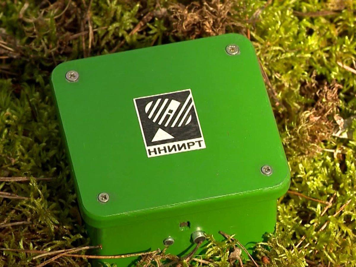 В Нижегородской губернии создано оригинальное устройство «Лесник», позволяющее бороться с противозаконной рубкой леса