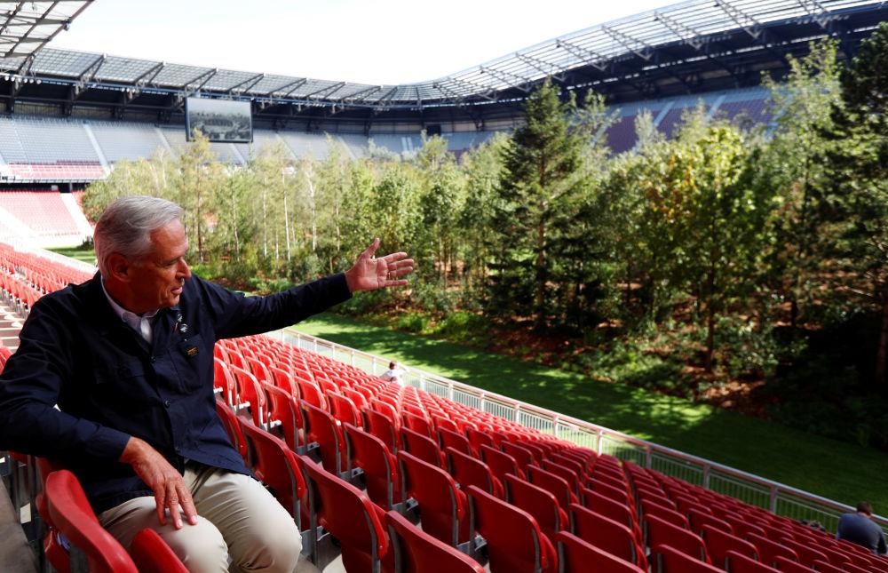 Деревья вместо футбола. На футбольной арене Вёртерзе стали вместо футбола демонстрировать полноценный лес