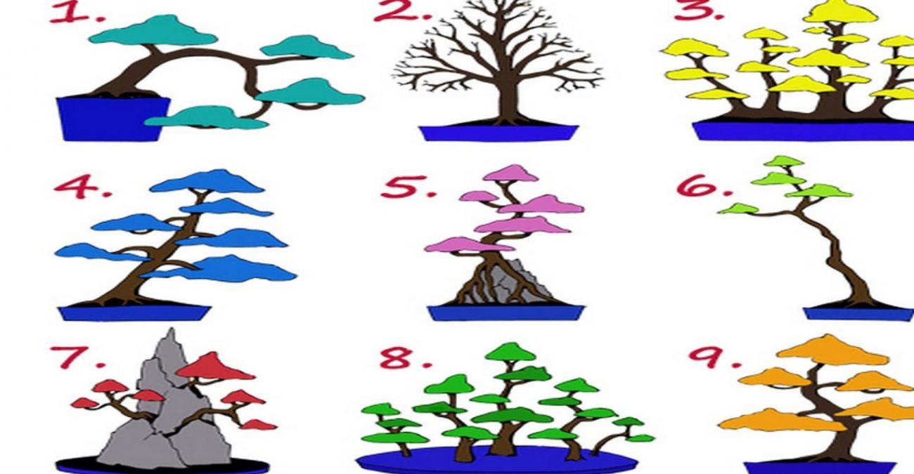 Выбор дерева подскажет Вам профессию