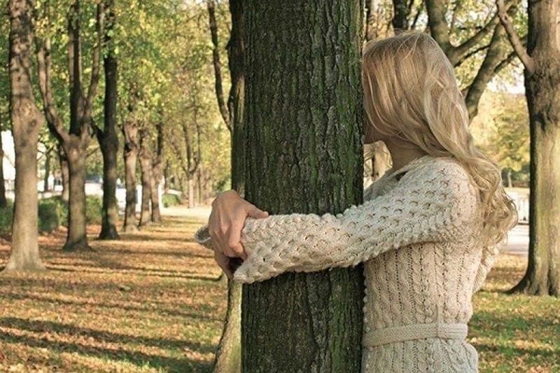 Лесничие из Исландии дали рекомендацию обнимать древесные стволы в период самоизоляции